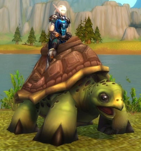 The Riding Turtle