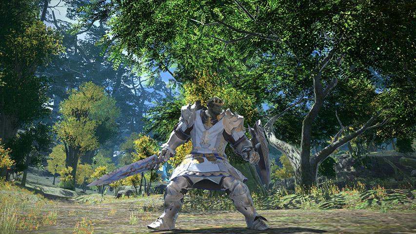 FFXIV Gladiator