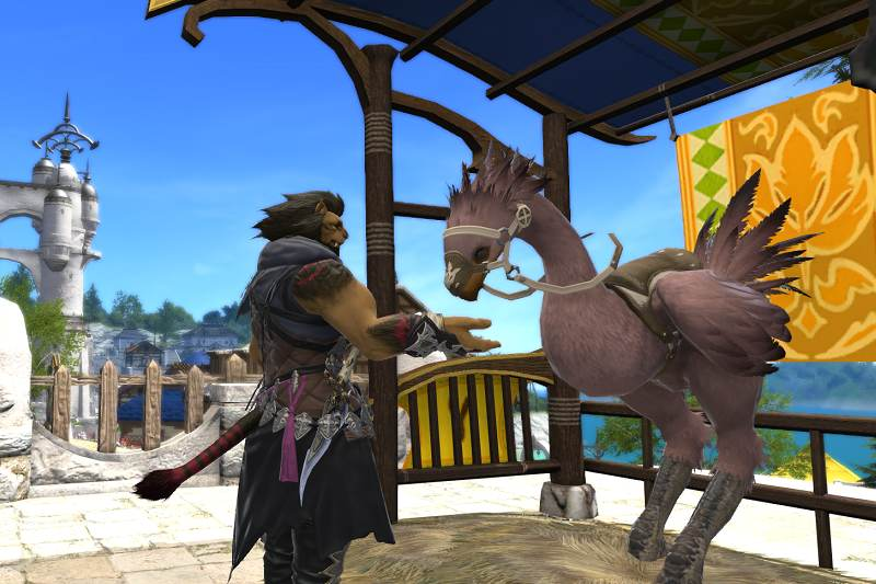 chocobo color changing